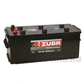 ZUBR Professional 190 рус (1000A 513x223x223)